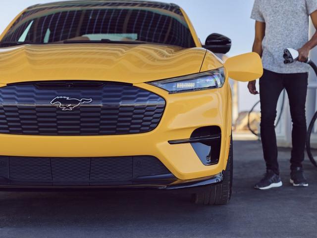 2020 - [Ford] Mustang Mach-E - Page 9 4-DDDD2-A8-9-CB5-4-BE9-872-E-4-FA7-A355-B4-FC