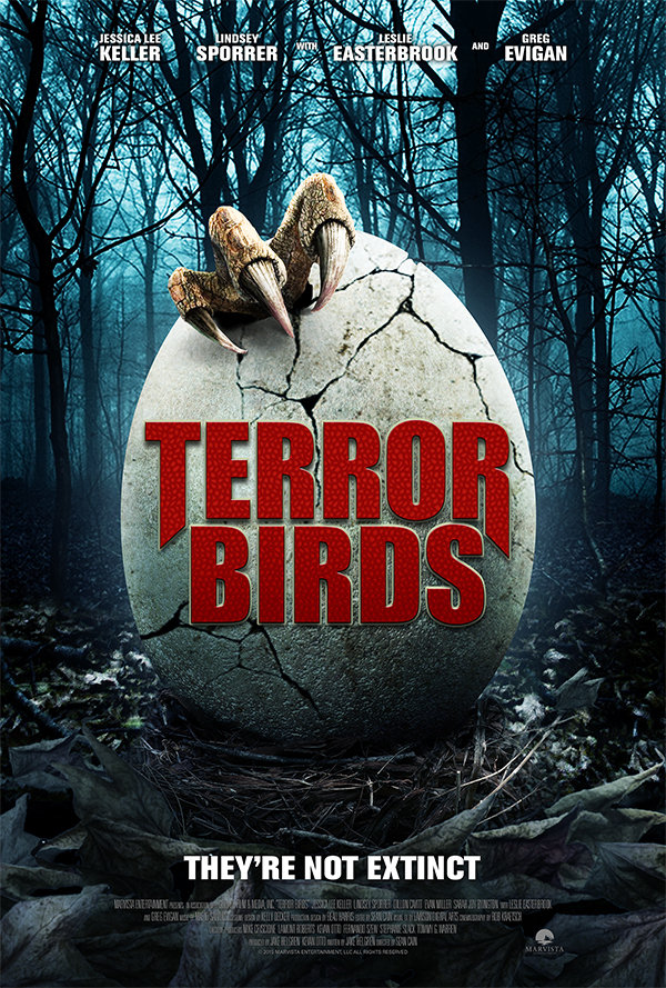 Terror Birds 2016 Dual Audio 480p HDRip [Hindi ORG + English] 300 MB