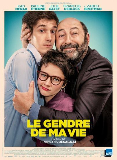 Zięć mojego życia / Le gendre de ma vie (2018) PL.BDRip.XviD-KiT | Lektor PL