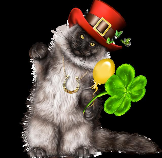 Leprechaun-Cat-With-Beer-48.png