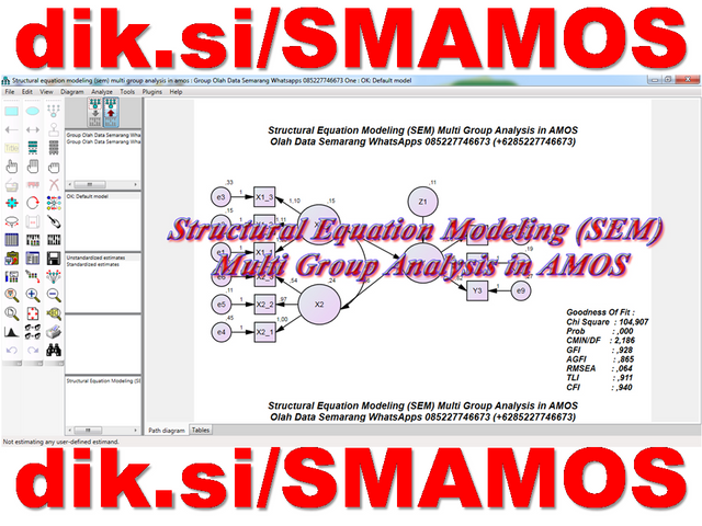 Structural Equation Modeling (SEM) Multi Group Analysis in AMOS