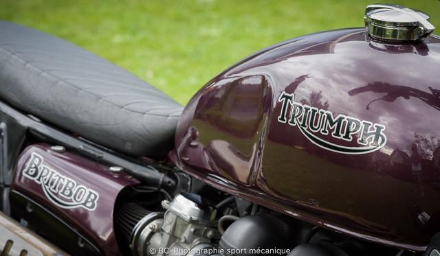 Triumph-Britbob-Pierrot-31