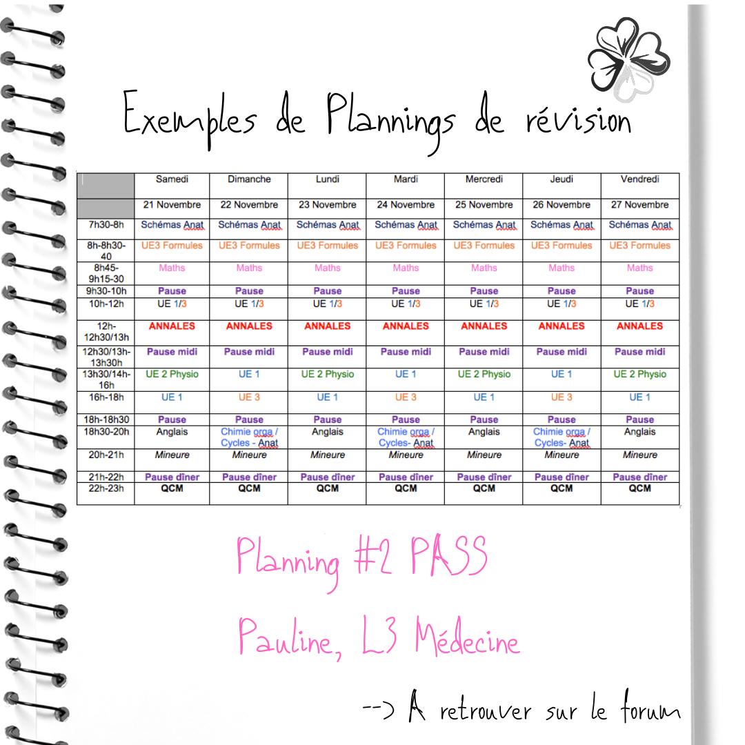 4-Planning-2-PASS-Pauline-L3-Me-decine.p