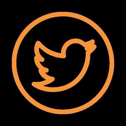 Overseas-network-twitter