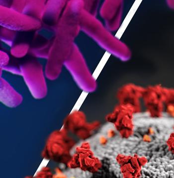 COVID-19 and Global TB