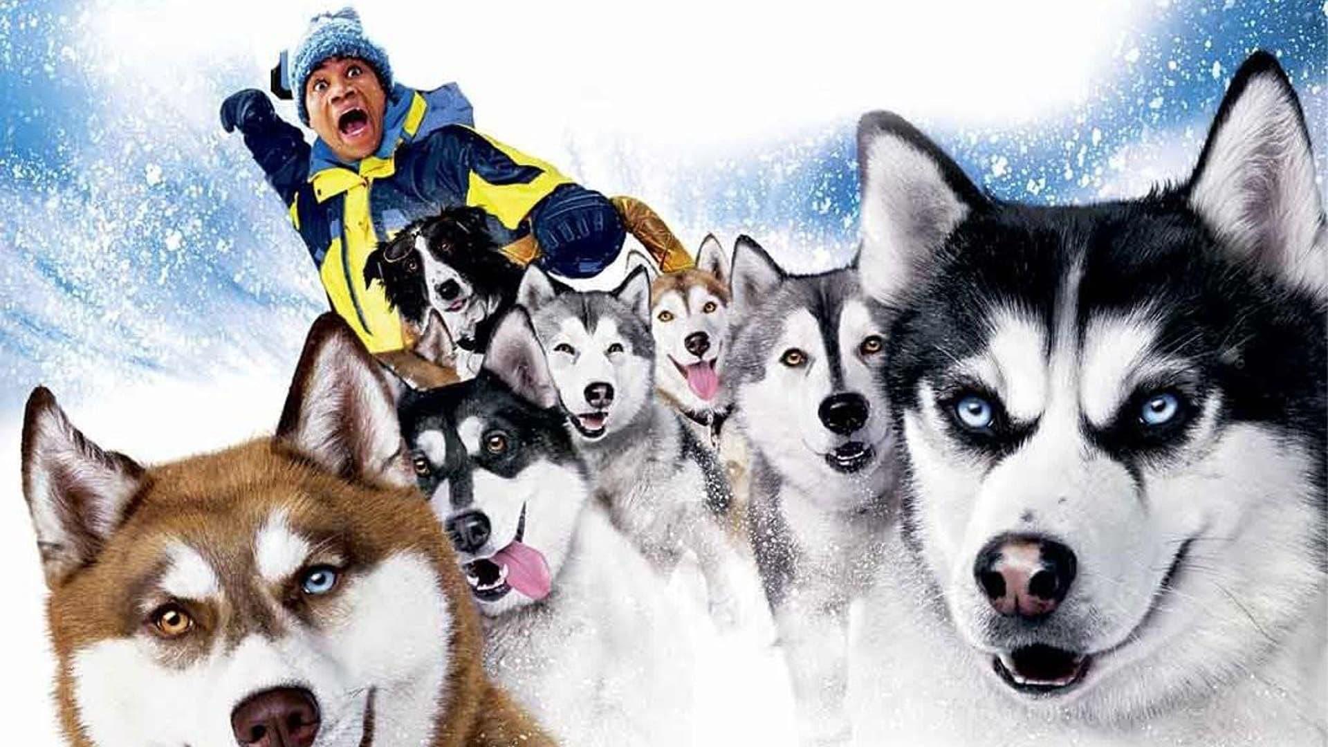 ზამთრის ძაღლები Snow Dogs