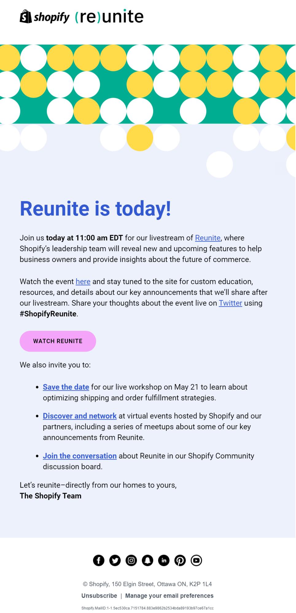 shopify's newsletter