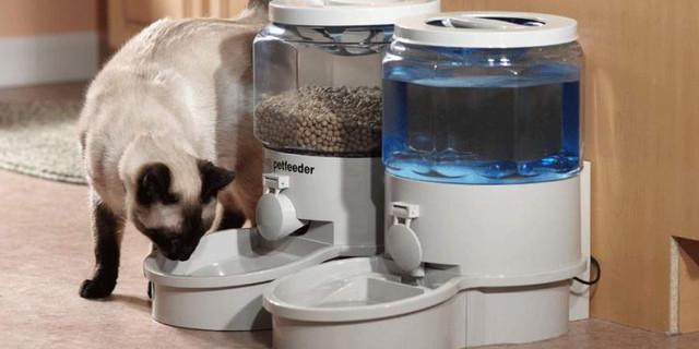 Katzenfutter-Spender