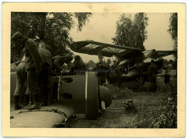 Orig-Foto-russisches-Beute-Flugzeug-Rata-Polikarpov-Wrack