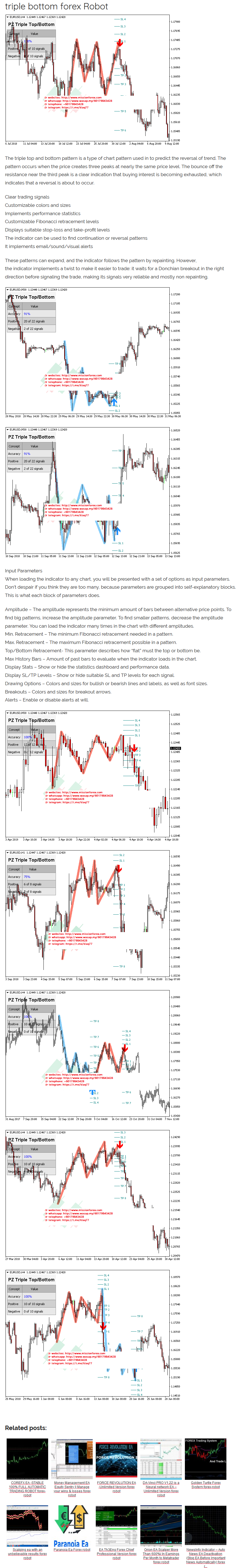 triple bottom forex Robot - automated trading forex system expert advisor
