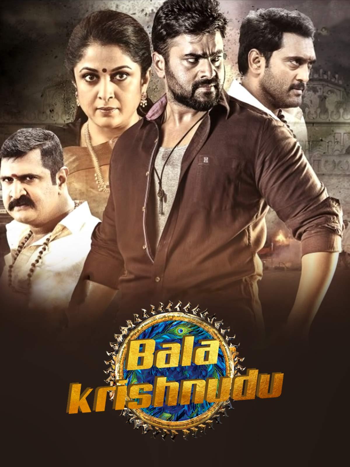 Balakrishnudu 2017 Hindi Dubbed HDRip x264 AAC