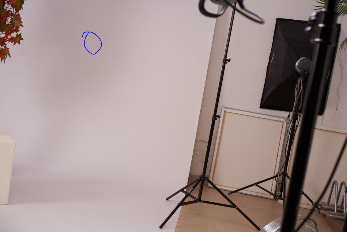 Sony A7RIII - Pixel Muerto en el sensor [ayuda] en Foro Sony Full Frame : CAMARASpixel2
