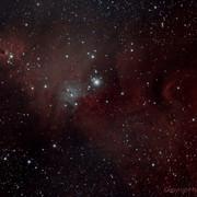 NGC2264-00.jpg