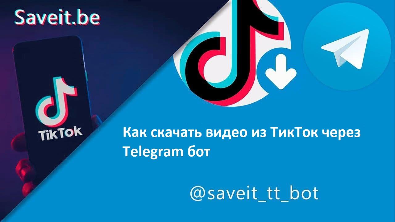 Как скачивать видео из TikTok с помощью Telegram бота? | Скачивай видео по ссылке