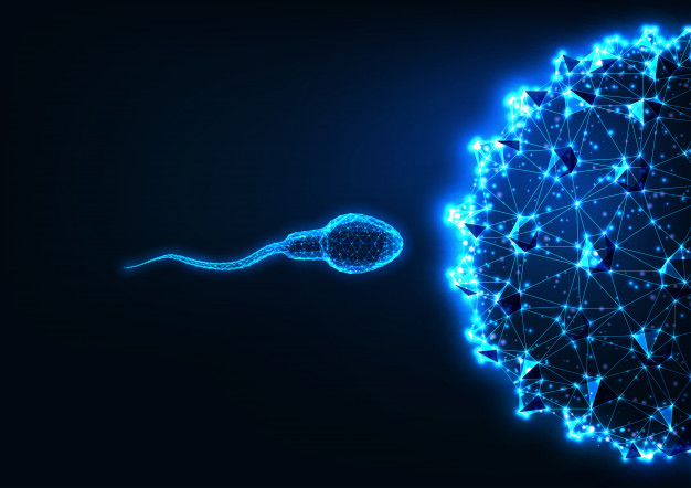 futuristic-fertilization-concept-with-glowing-low-polygonal-sperm-and-egg-cells-67515-870