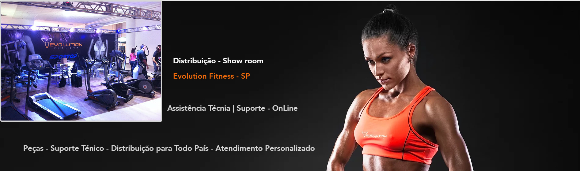 Assisência Ténica Evolution Fitness