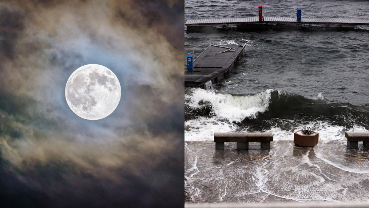 NASA: Cambiamenti Orbita Lunare causeranno grandi inondazioni nel 2030