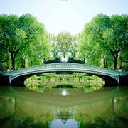Bow Bridge Reflection Central Park
