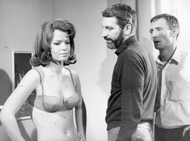 art-cinema-erotica-radley-metzger