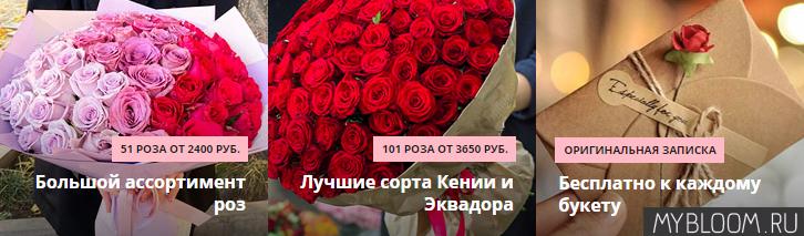 https://i.ibb.co/K6M8CZb/image.jpg