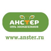 Сеть зоомагазинов Анстер-logo