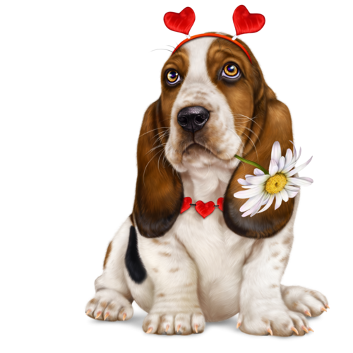 lonely-heart-basset-hound-8.png