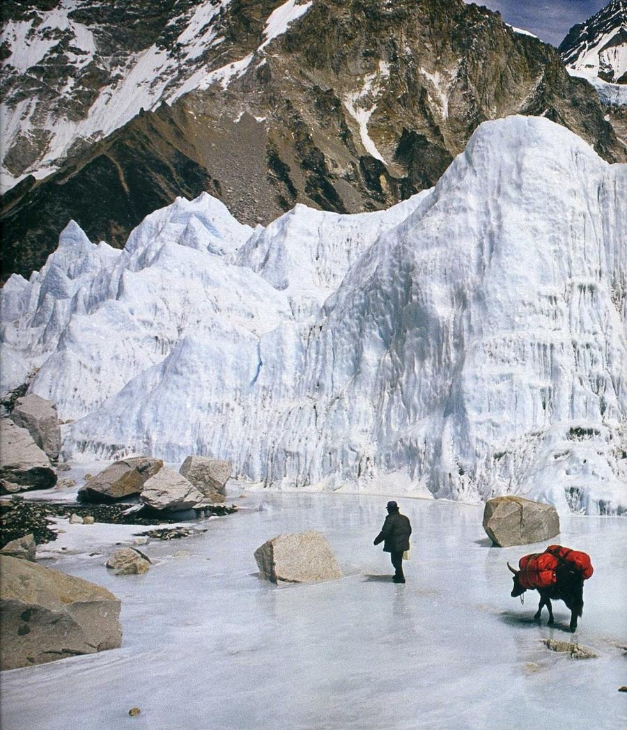 fotografii National Geographic 50