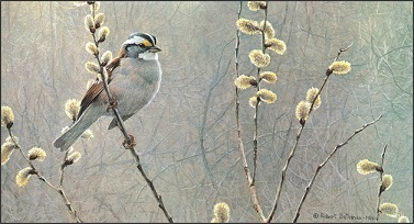 1310901998-white-throated-sparrow-and-pussy-willow-1984-www-nevsepic-com-ua