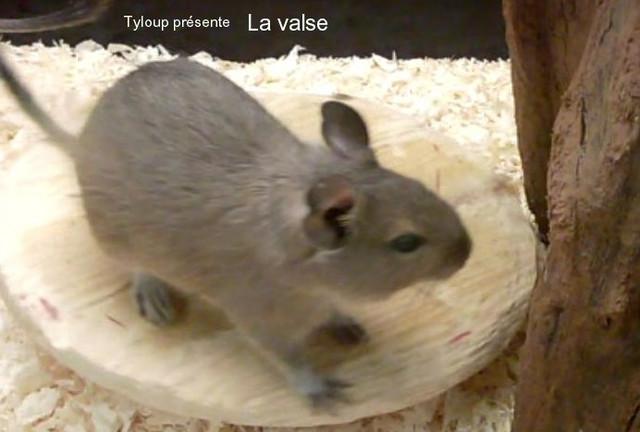 La-valse