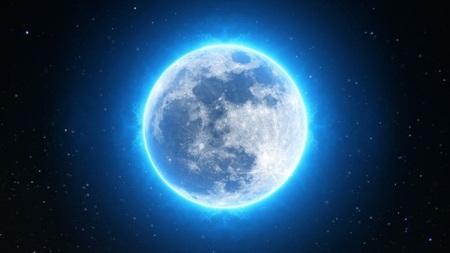 Best-Astrologer