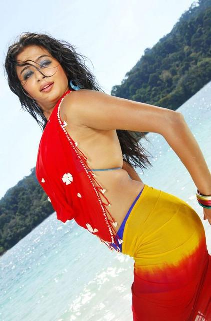 Priyamani-Hot-Bra-Saree-Pictures