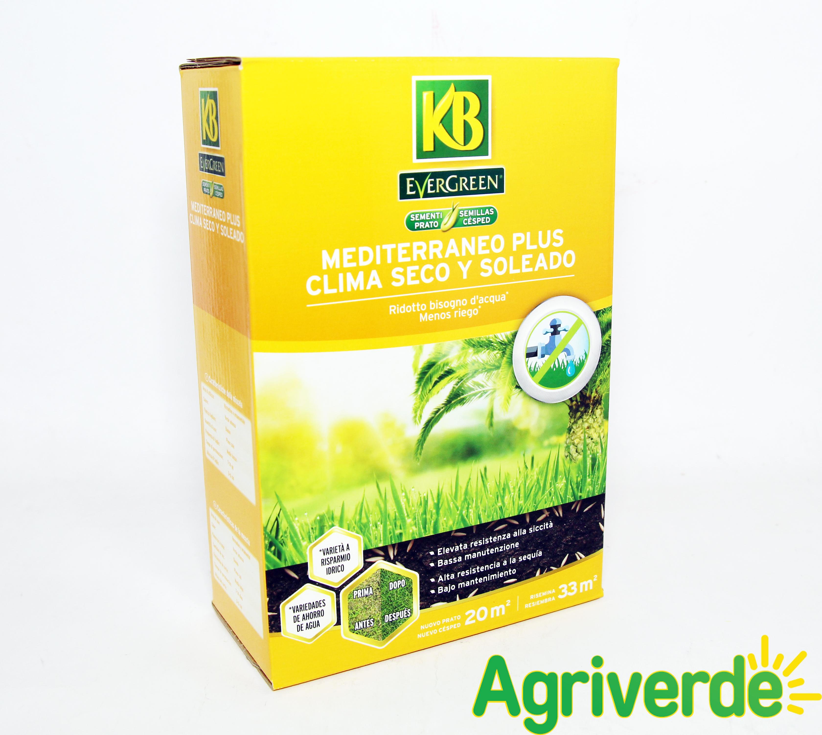 Manutenzione Prato Di Gramignone dettagli su semi prato evergreen mediterraneo plus ridotto bisogno d'acqua  500gr x 20m2 - kb