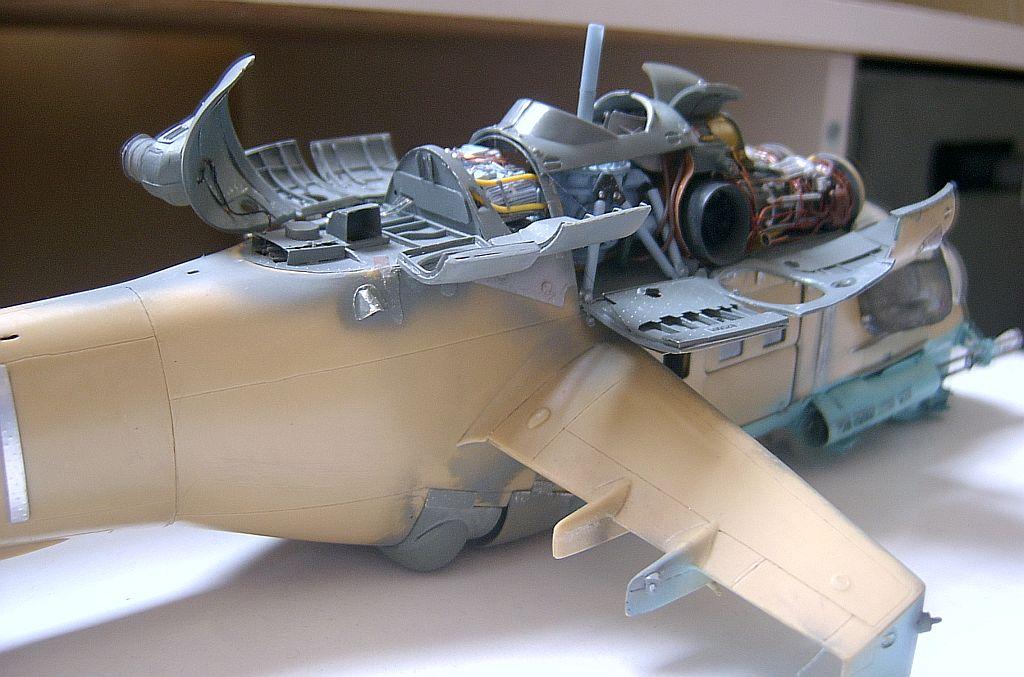 Hind-F1562.jpg