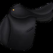 Esatula musta3