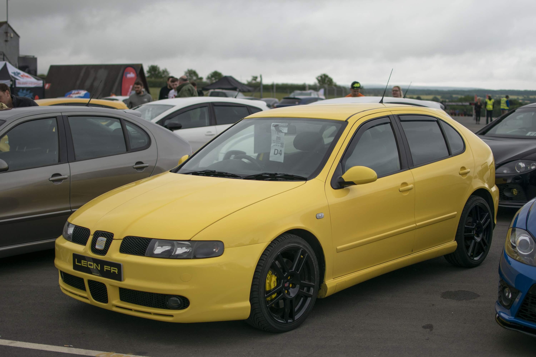 Yellowfr-3.jpg