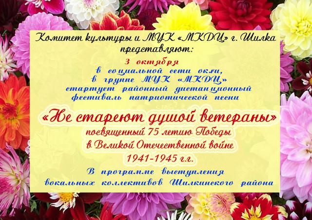 Районный дистанционный фестиваль патриотической песни