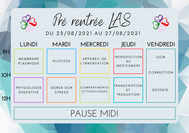 Semaine-2.png