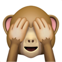 see-no-evil-monkey.png