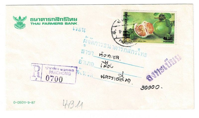 Pomelo-Thailand