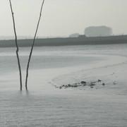 shallow-suffolk-sailing-Still021