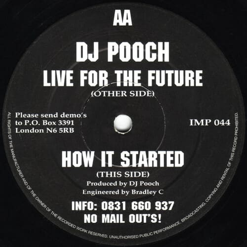 Download DJ Pooch - Live For The Future / How It Started mp3