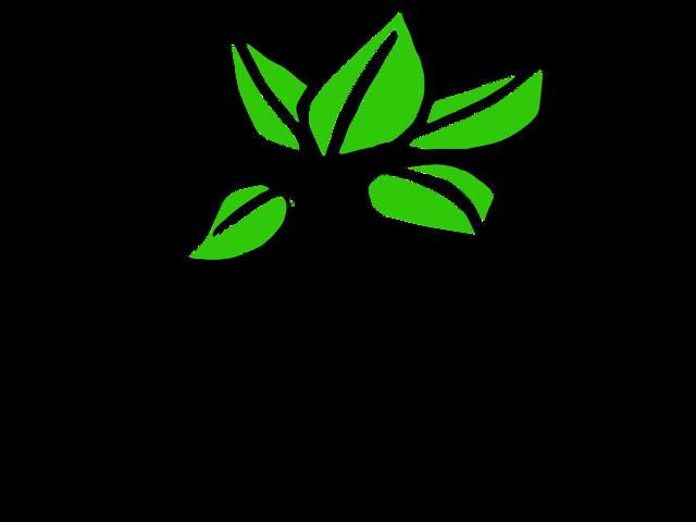 Plant-Doodle