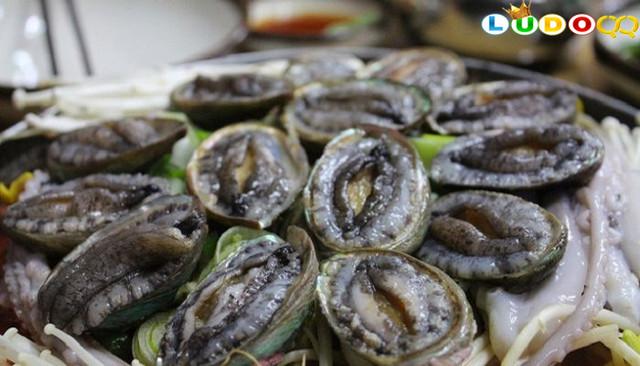 Begini nih Alasan Abalone Dijual dengan Harga Tinggi