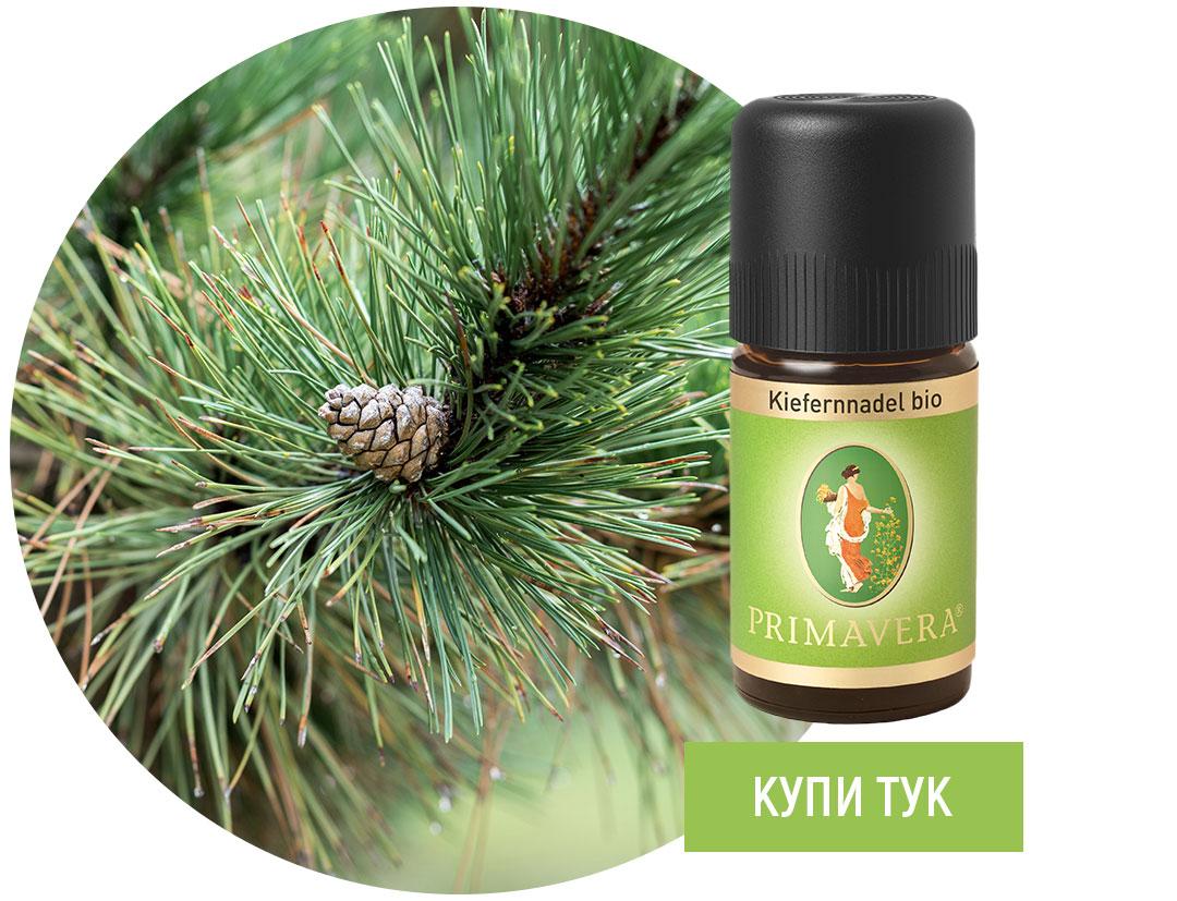 Borovi-igli-essential-oil-Primavera