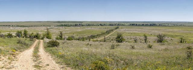 Untitled-Panorama2.jpg