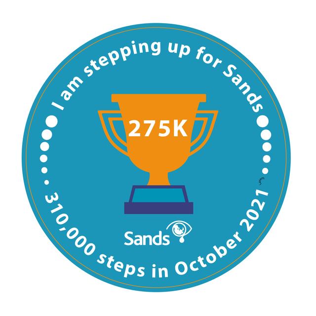 310k-Steps-Achievement-Badges-275