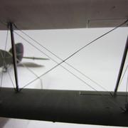 IMG-4525