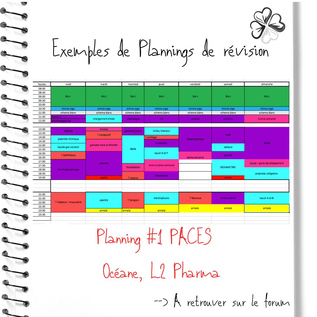 5-Planning-1-PACES-Oce-ane.png