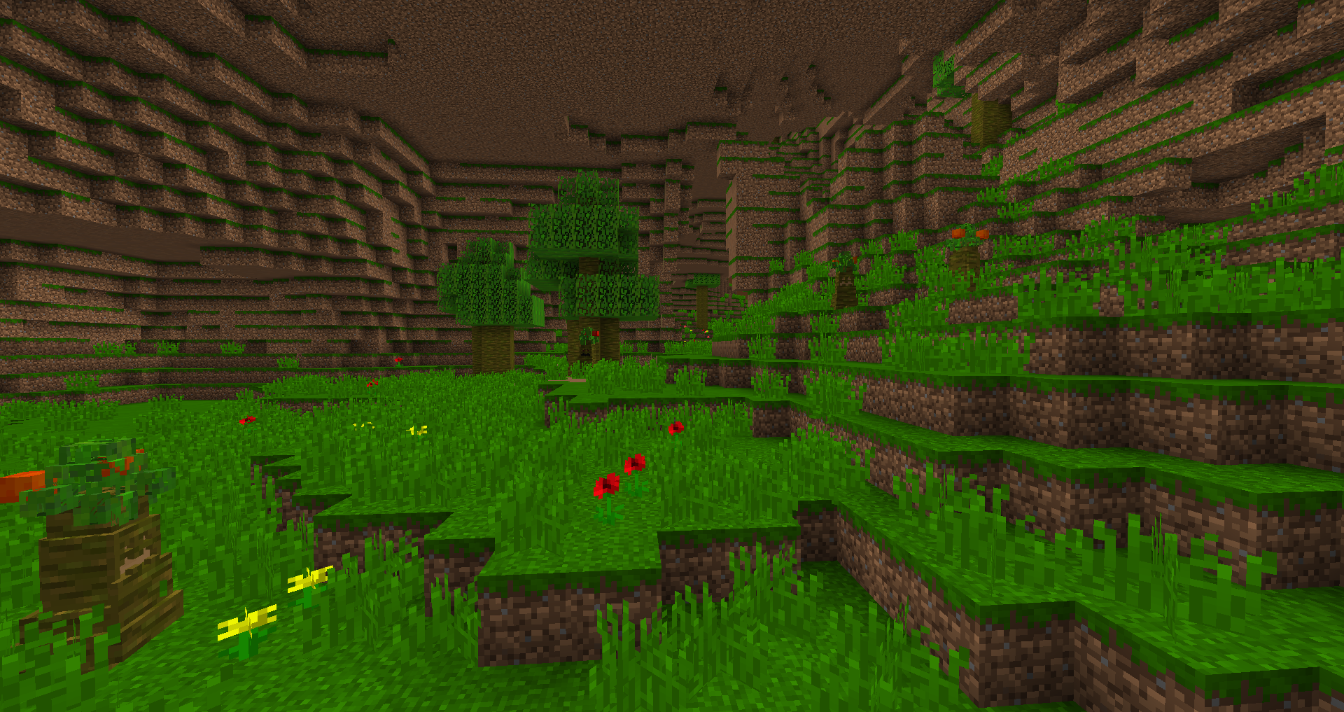 Flora dimension
