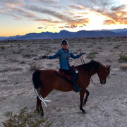 shania-arizona-horse022819-3